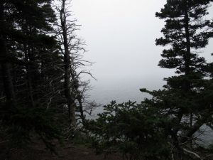 Am letzten Tag war es auch mal nebelig