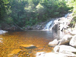 Mary Ann Wasserfall