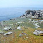 Sheaves Cove - bealgte Felsen
