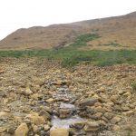 Tablelands - Gros Morne Nationalpark (2)
