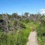 Western Brook Pond - Gros Morne (4)