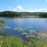 Zahlreiche Seen und Meereinbuchtungen - Harry's Harbour